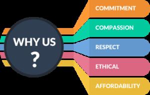 why-choose-us-digitalnerd